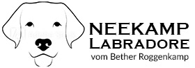 Neekamp Labradore Cloppenburg Logo